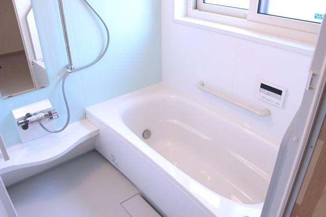 お風呂場に湧くコバエ